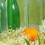 Gelee mit Orangen und Holunder