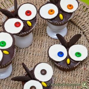 eulen kindergeburtstags backideen cupcakes muffins. Black Bedroom Furniture Sets. Home Design Ideas