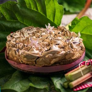 leckere Kuchenrezepte mit Rhabarber