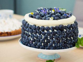 Blaubeertorte mit Vanillecreme
